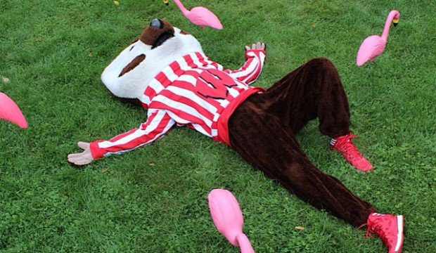 UW-Madison is among the best party schools in the U.S.