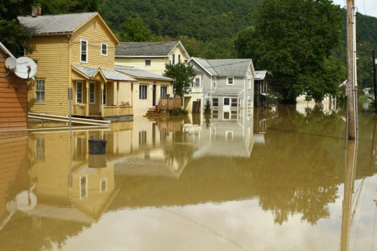 You need to get flood insurance. Here's how.