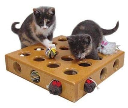 cheap toys for pets