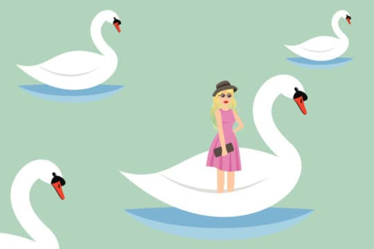Illustration of Taylor Swift riding a swan