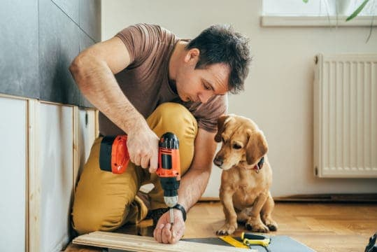 Man with a drill and a dog during a home remodel