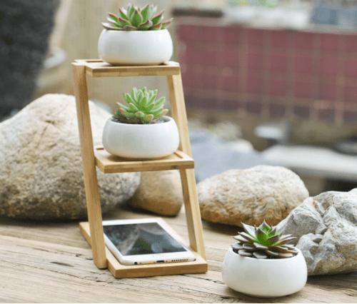 plant pot tray