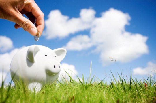 Piggy bank in the field