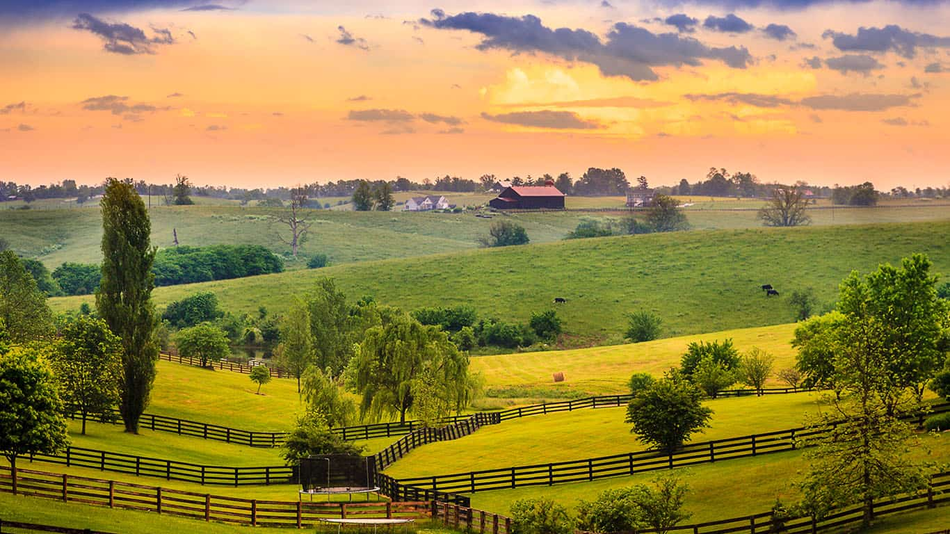 Blue grass, Kentucky