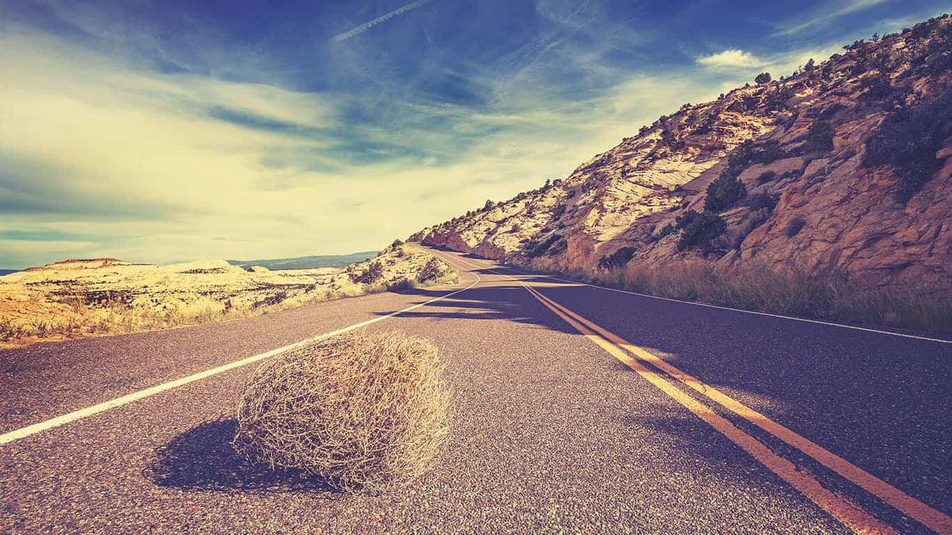 Vintage toned tumbleweed on empty road, travel concept.