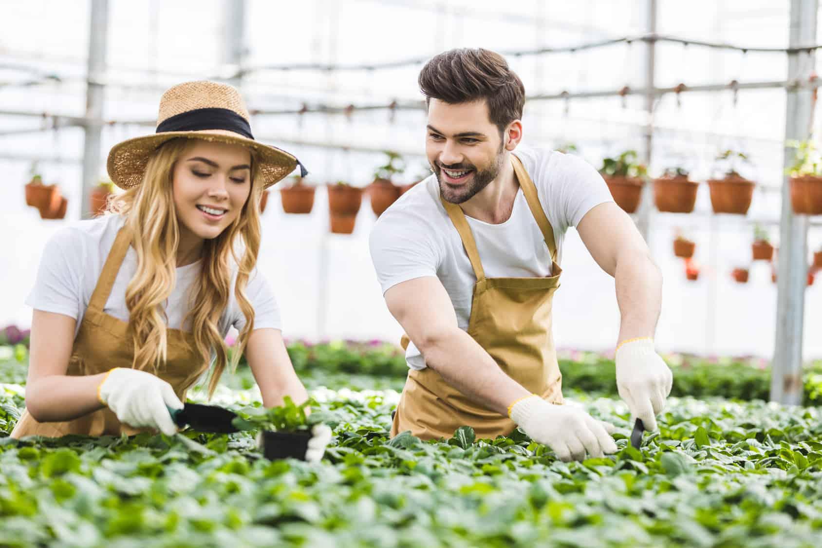 pareja sembrando plantas