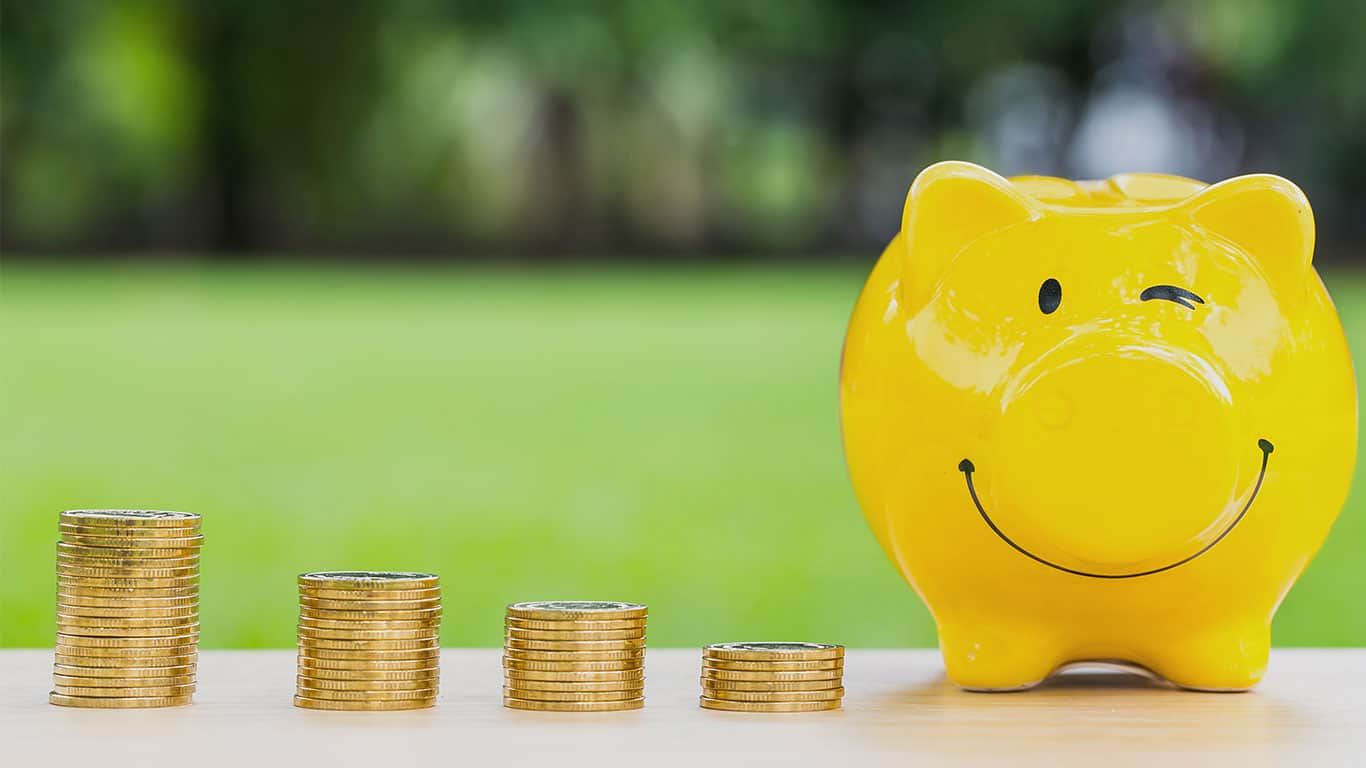 Happy piggy bank and coins stack over blurred green garden background