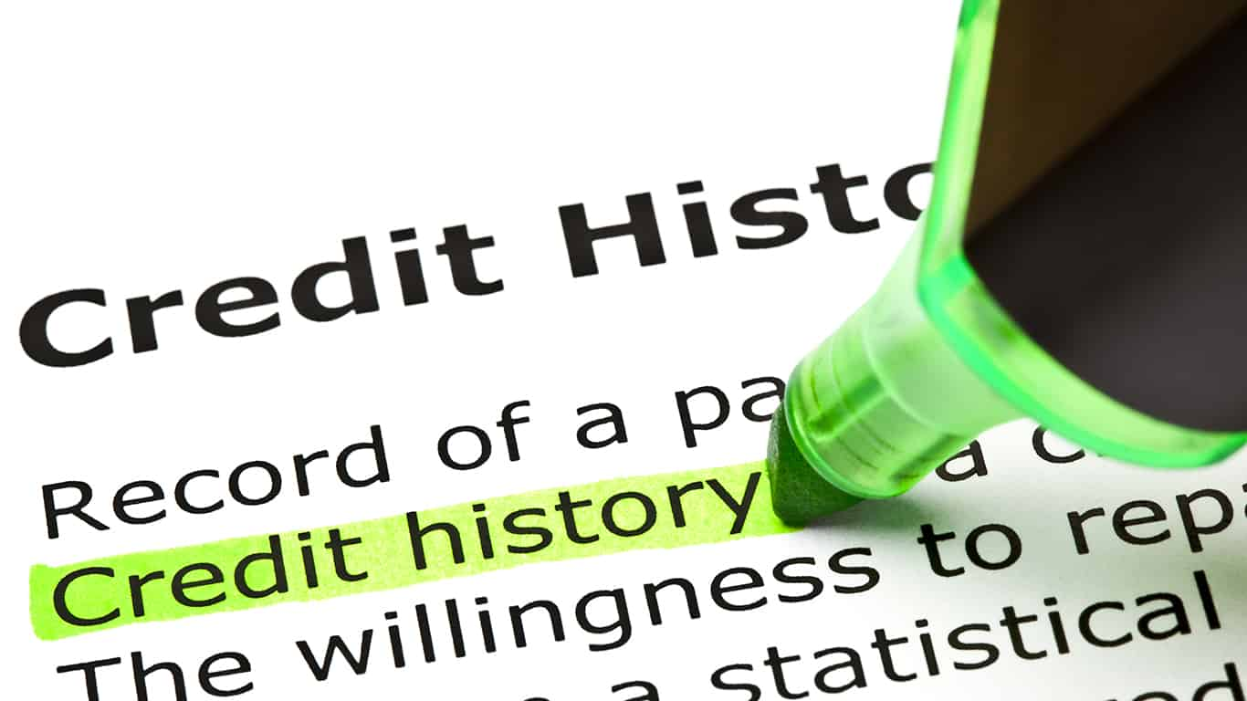 Credit history highlighted in green, under the heading Credit History
