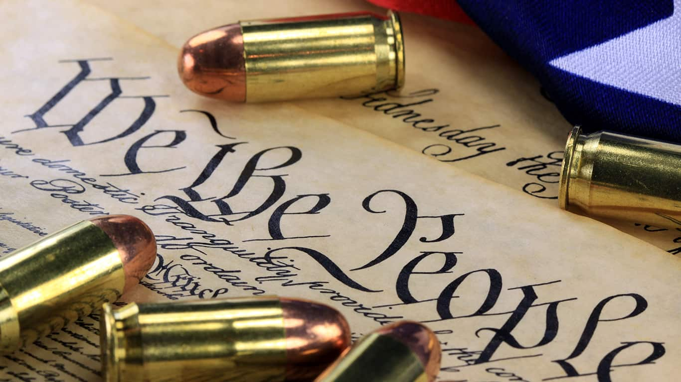 Second Amendment advocates