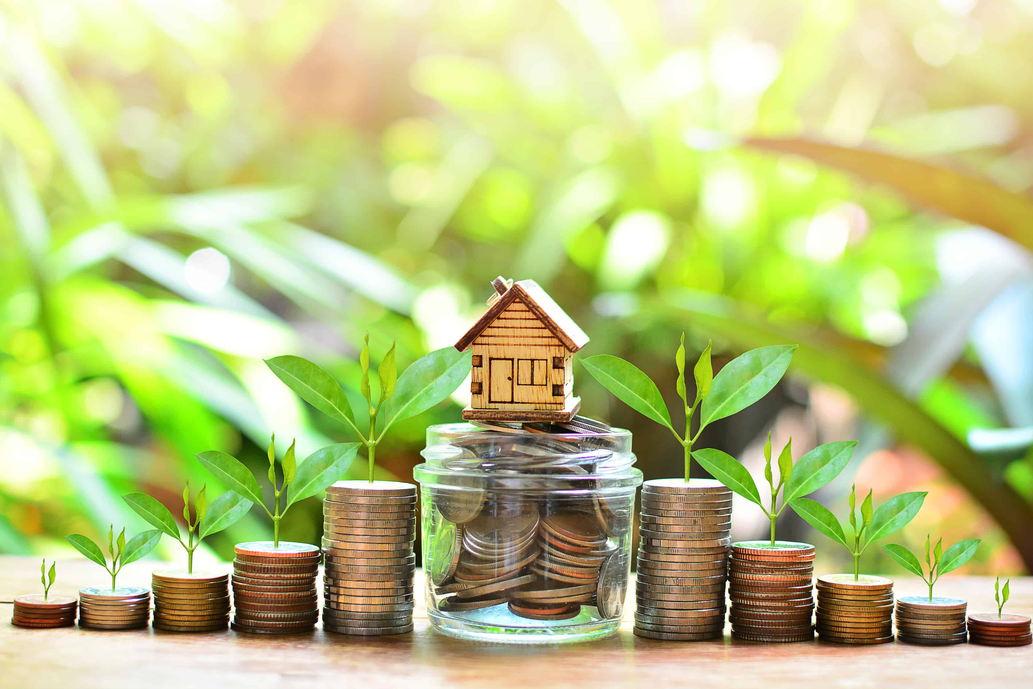 home equity loans; tiny wooden house surrounded by coins and growing plants