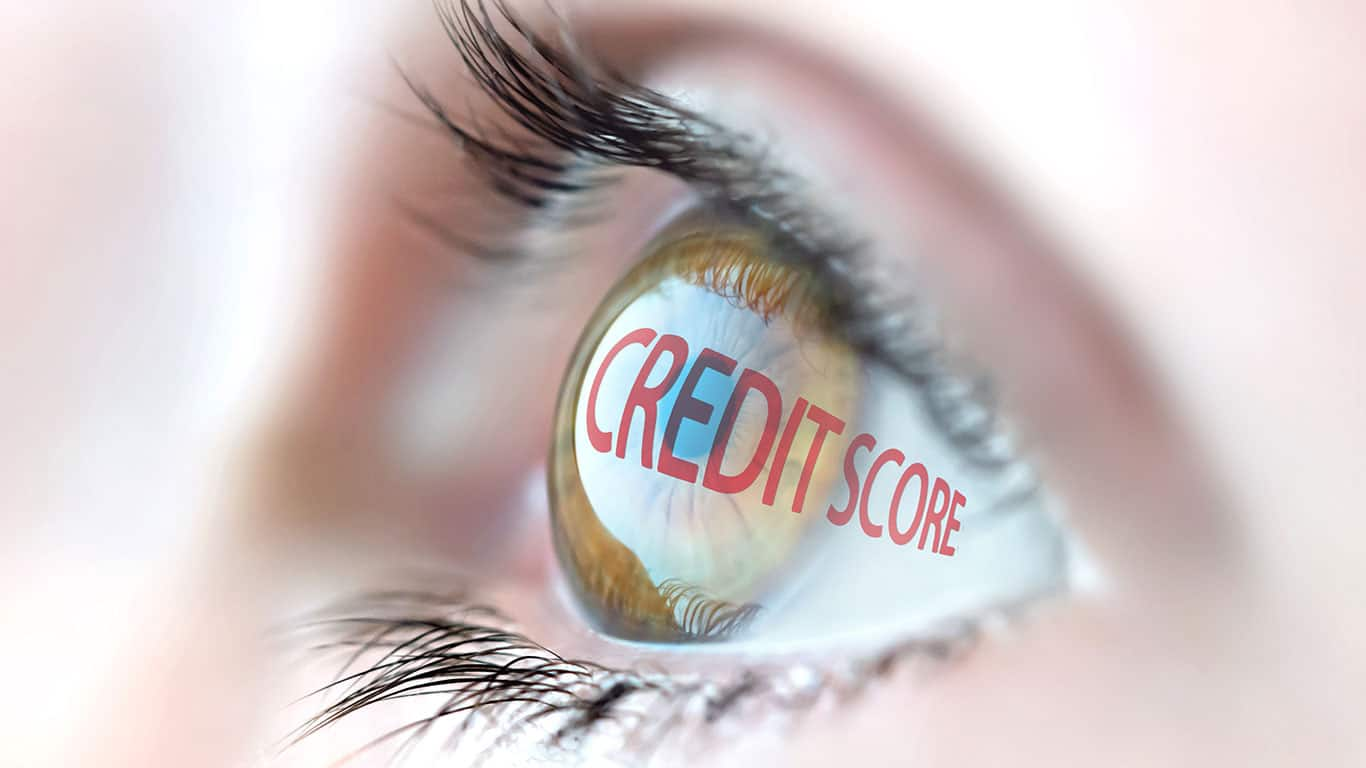 Make sure your credit report reflects the update