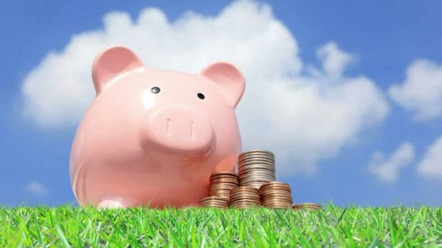 A pink piggy bank and money